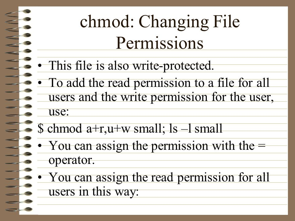 chmod: Changing File Permissions This file is also write-protected.