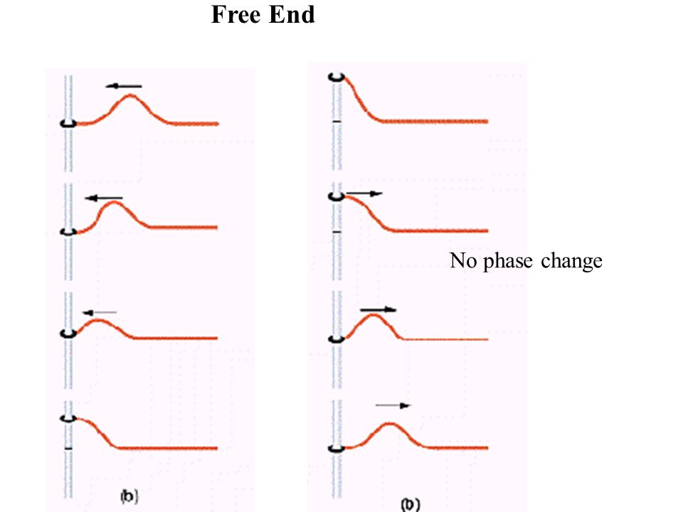Free End No phase change