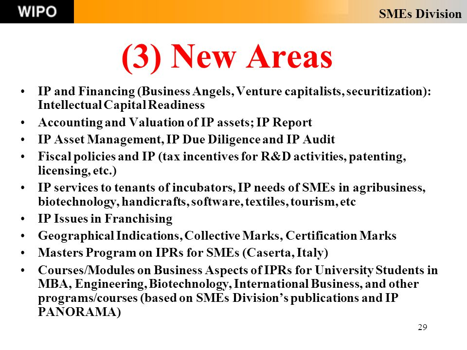 SMEs Division 29 (3) New Areas IP and Financing (Business Angels, Venture capitalists, securitization): Intellectual Capital Readiness Accounting and Valuation of IP assets; IP Report IP Asset Management, IP Due Diligence and IP Audit Fiscal policies and IP (tax incentives for R&D activities, patenting, licensing, etc.) IP services to tenants of incubators, IP needs of SMEs in agribusiness, biotechnology, handicrafts, software, textiles, tourism, etc IP Issues in Franchising Geographical Indications, Collective Marks, Certification Marks Masters Program on IPRs for SMEs (Caserta, Italy) Courses/Modules on Business Aspects of IPRs for University Students in MBA, Engineering, Biotechnology, International Business, and other programs/courses (based on SMEs Division's publications and IP PANORAMA)