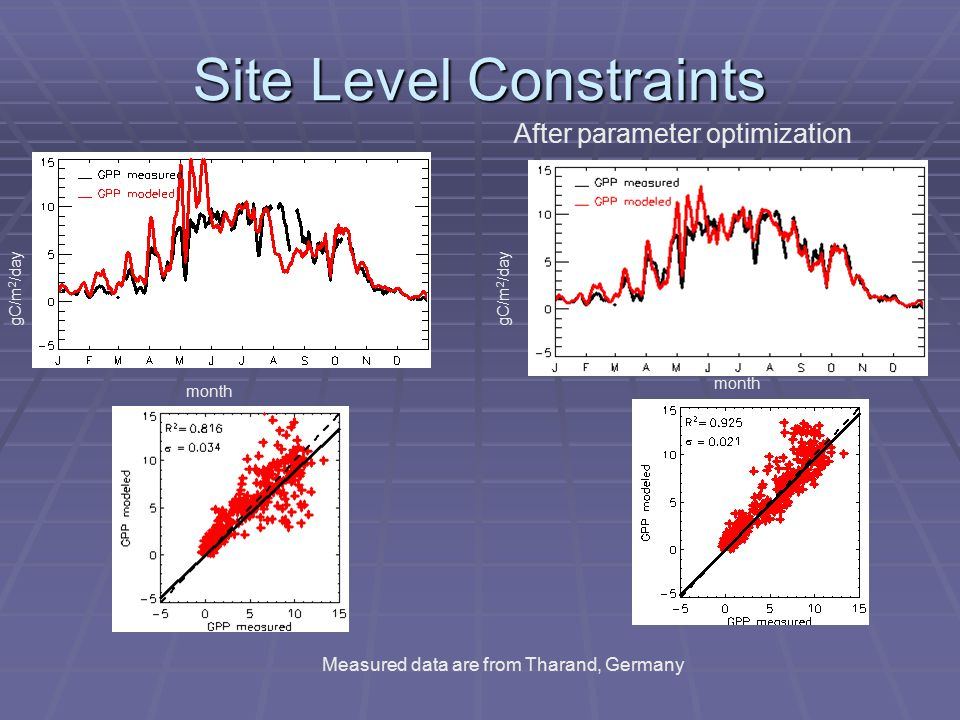 Site Level Constraints gC/m 2 /day month Measured data are from Tharand, Germany After parameter optimization