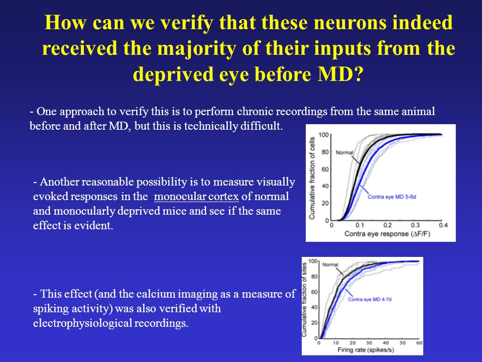 How can we verify that these neurons indeed received the majority of their inputs from the deprived eye before MD.