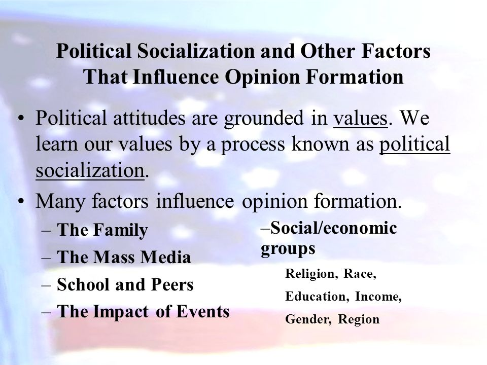 The impact of political socialization on political participation