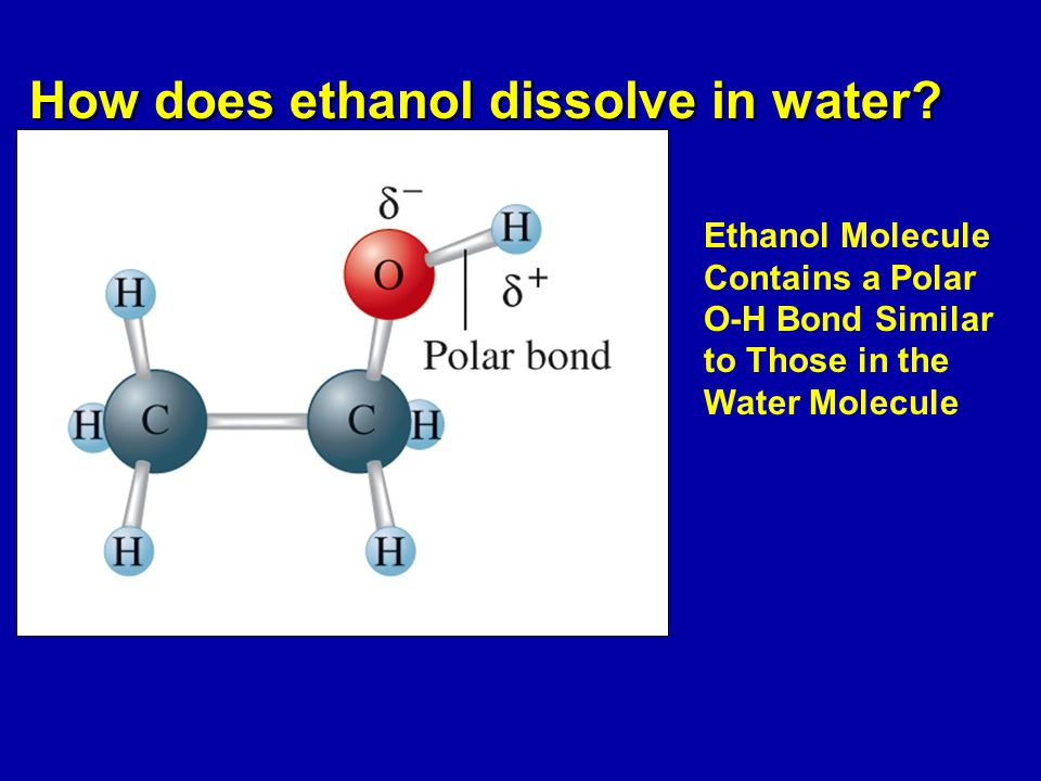 How does ethanol dissolve in water.