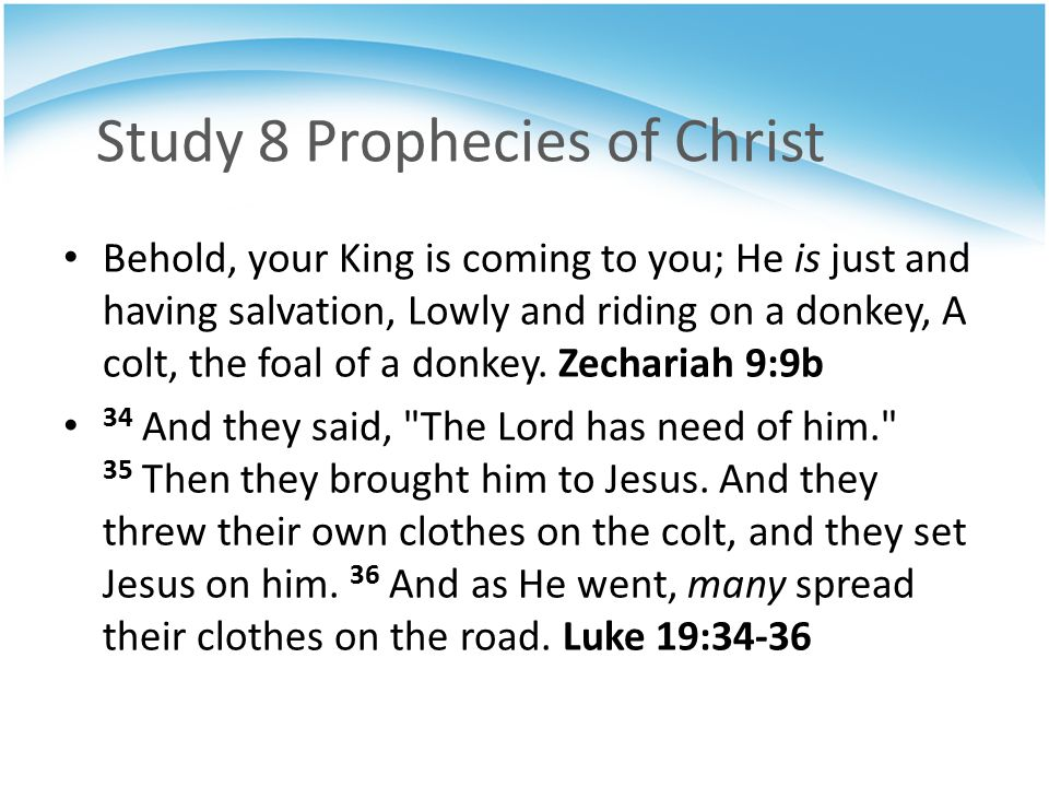 Study 8 Prophecies of Christ Behold, your King is coming to you; He is just and having salvation, Lowly and riding on a donkey, A colt, the foal of a donkey.