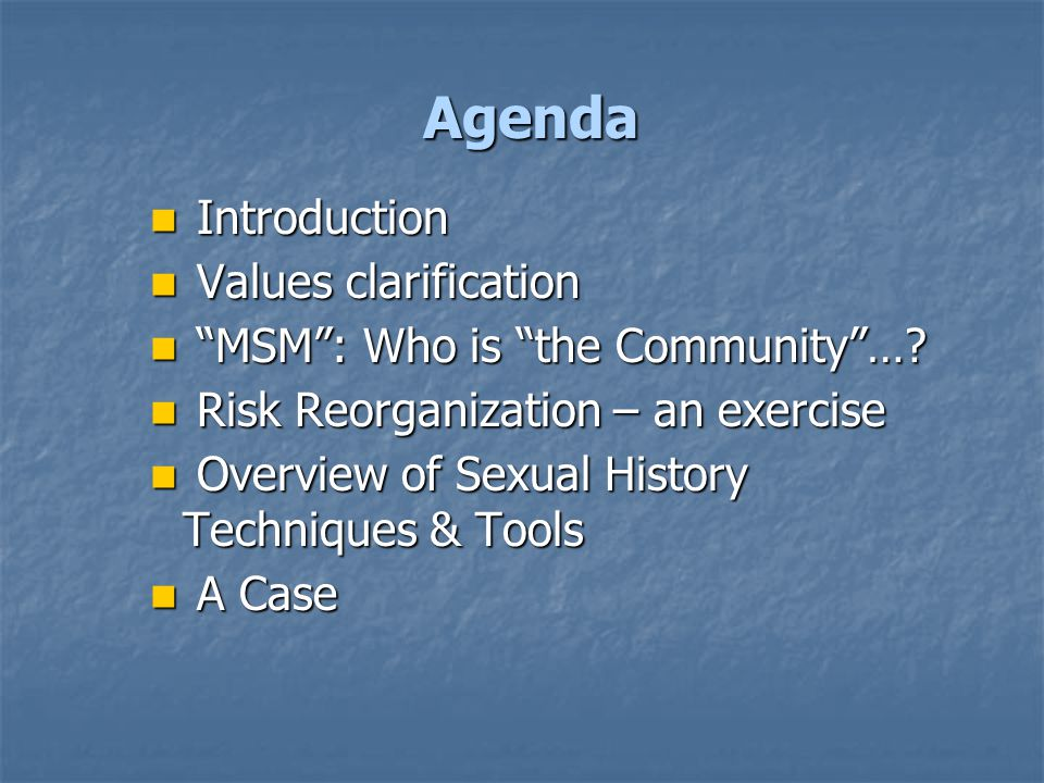 Agenda Introduction Introduction Values clarification Values clarification MSM : Who is the Community ….
