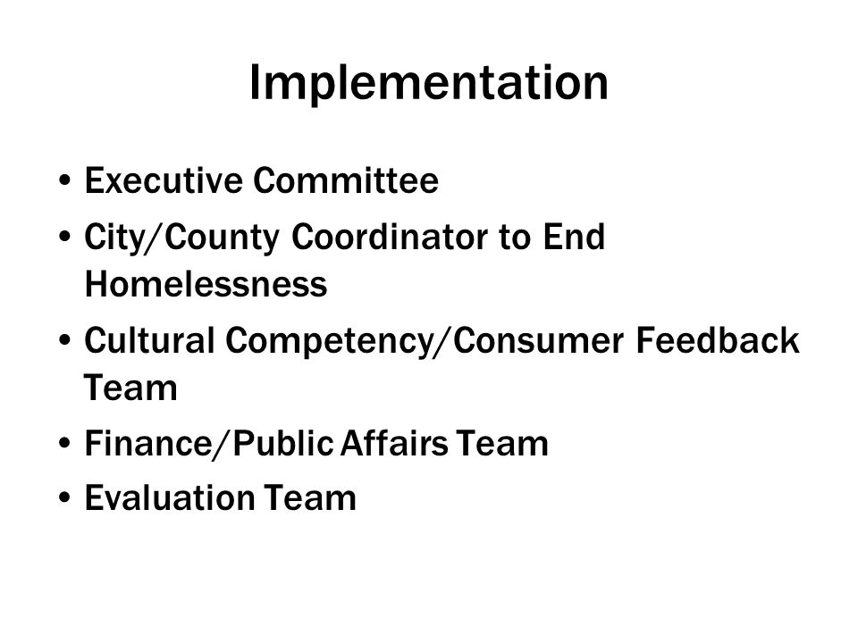 Implementation Executive Committee City/County Coordinator to End Homelessness Cultural Competency/Consumer Feedback Team Finance/Public Affairs Team Evaluation Team