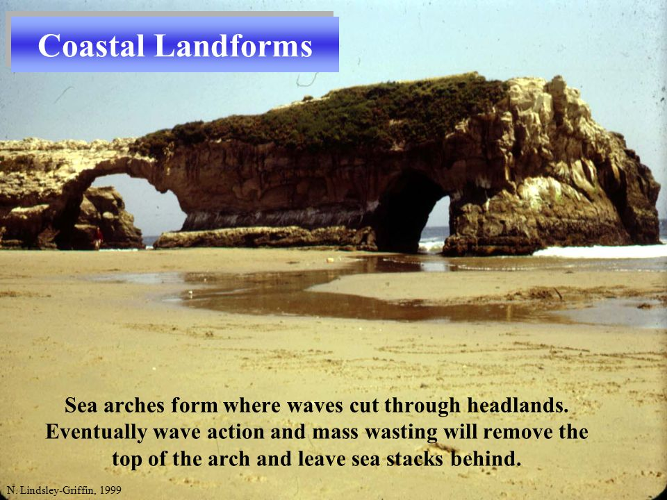 N. Lindsley-Griffin, 1999 Sea arches form where waves cut through headlands.