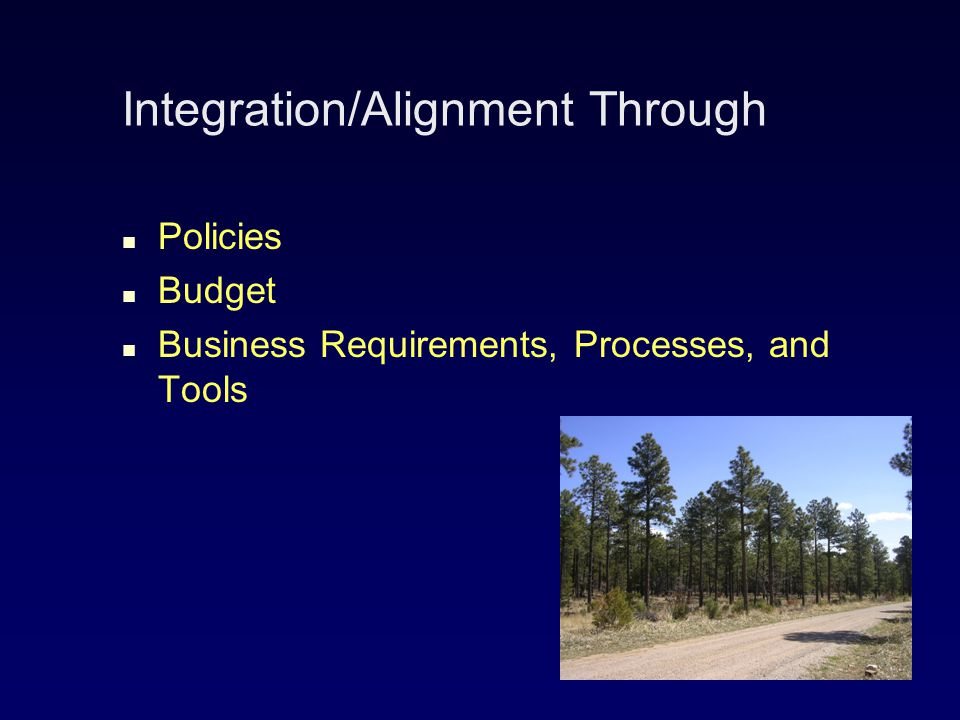 Integration/Alignment Through Policies Budget Business Requirements, Processes, and Tools