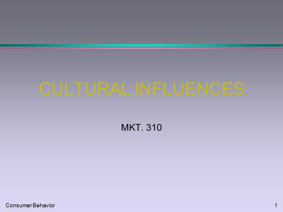 Consumer behavior1 cultural influences mkt consumer behavior2 1 consumer behavior1 cultural influences mkt 310 malvernweather Images
