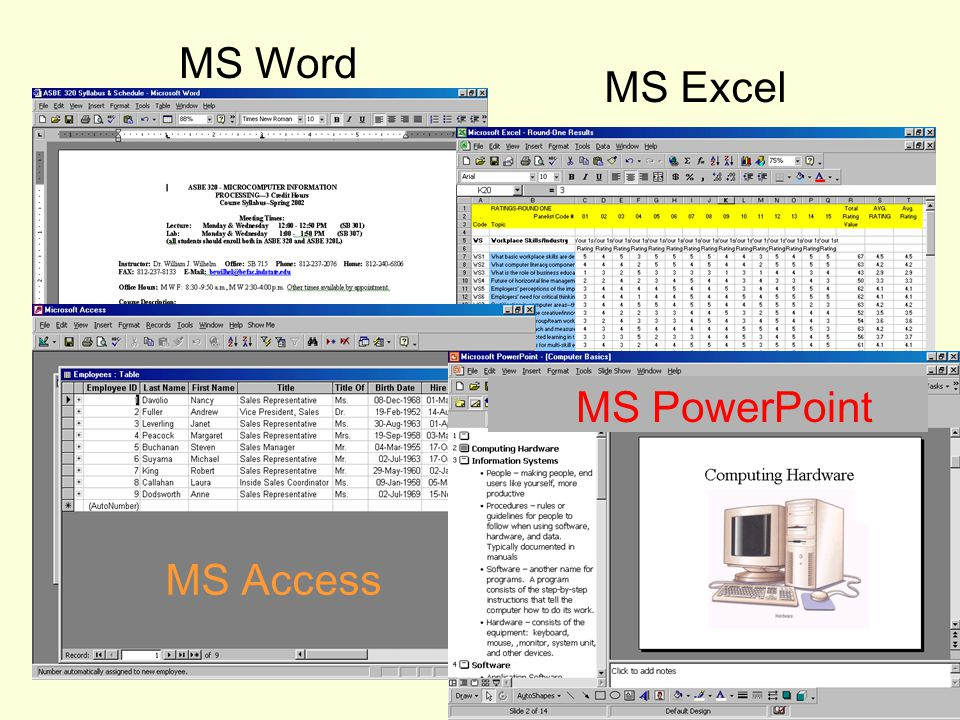 MS Word MS Excel MS Access MS PowerPoint