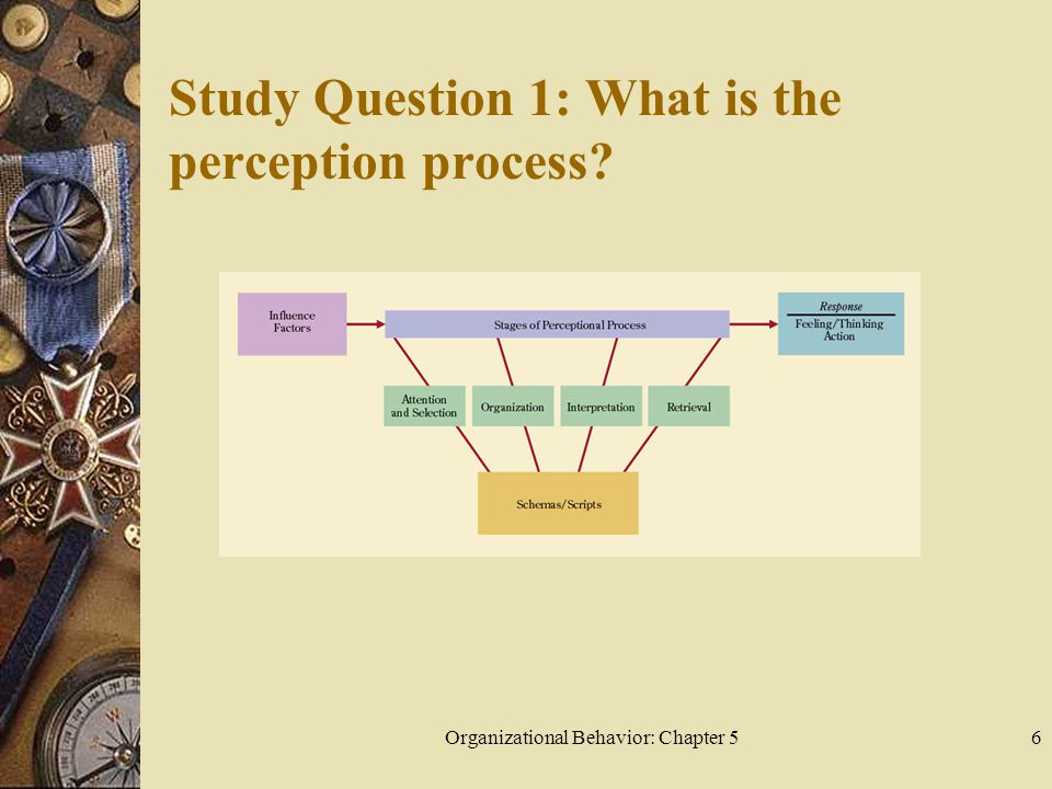 Organizational Behavior: Chapter 56 Study Question 1: What is the perception process