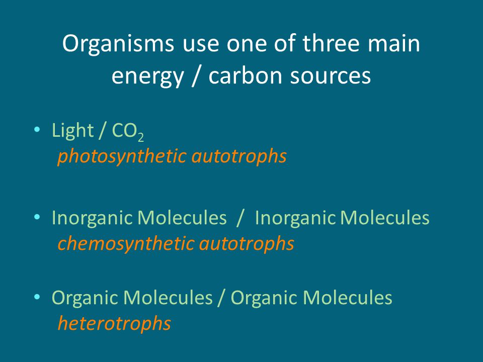 organisms that use chemosynthesis Chemosynthesis is a process of producing energy by burning chemicals it requires no sunlight and is typical for deep sea ecosystems near the hydrothermal vents.