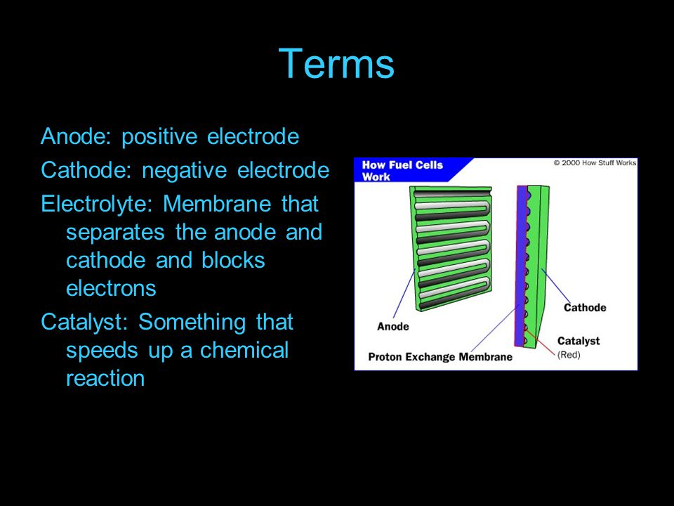 Terms Anode: positive electrode Cathode: negative electrode Electrolyte: Membrane that separates the anode and cathode and blocks electrons Catalyst: Something that speeds up a chemical reaction