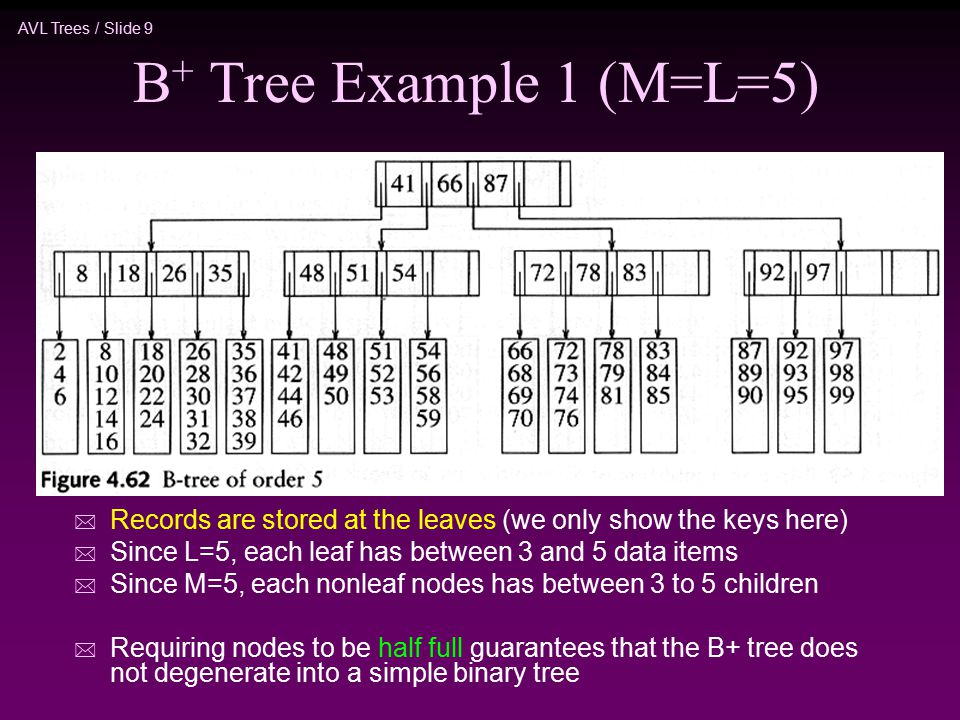 AVL Trees / Slide 9 B + Tree Example 1 (M=L=5) * Records are stored at the leaves (we only show the keys here) * Since L=5, each leaf has between 3 and 5 data items * Since M=5, each nonleaf nodes has between 3 to 5 children * Requiring nodes to be half full guarantees that the B+ tree does not degenerate into a simple binary tree
