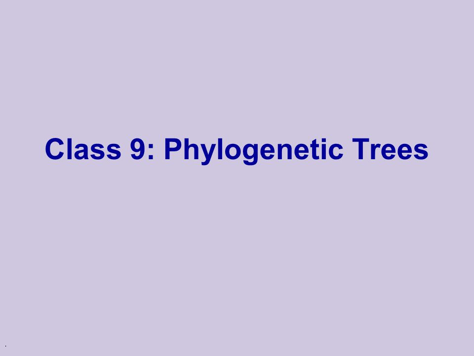 . Class 9: Phylogenetic Trees