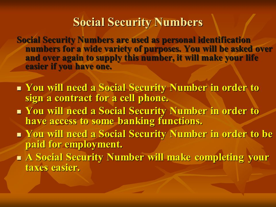 Social Security Numbers Social Security Numbers are used as personal identification numbers for a wide variety of purposes.