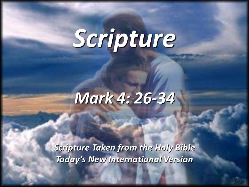 Scripture Mark 4: Scripture Taken from the Holy Bible Today's New International Version