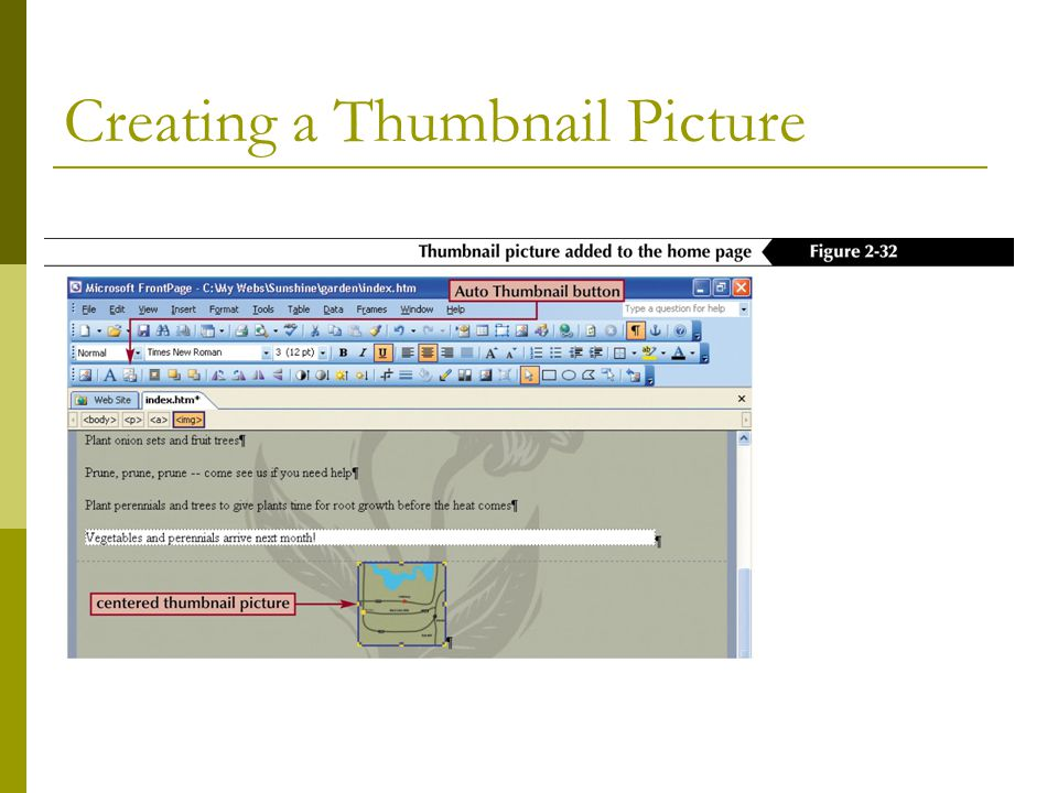 Creating a Thumbnail Picture