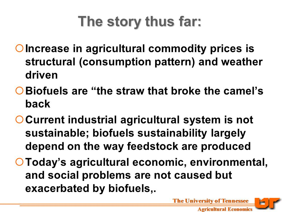 The story thus far:  Increase in agricultural commodity prices is structural (consumption pattern) and weather driven  Biofuels are the straw that broke the camel's back  Current industrial agricultural system is not sustainable; biofuels sustainability largely depend on the way feedstock are produced  Today's agricultural economic, environmental, and social problems are not caused but exacerbated by biofuels,.