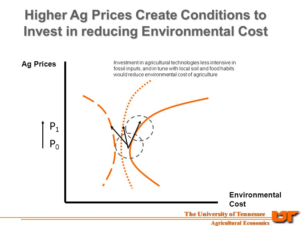 Ag Prices Environmental Cost Higher Ag Prices Create Conditions to Invest in reducing Environmental Cost P0P0 P1P1 Investment in agricultural technologies less intensive in fossil inputs, and in tune with local soil and food habits would reduce environmental cost of agriculture