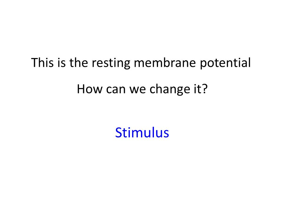 This is the resting membrane potential How can we change it Stimulus