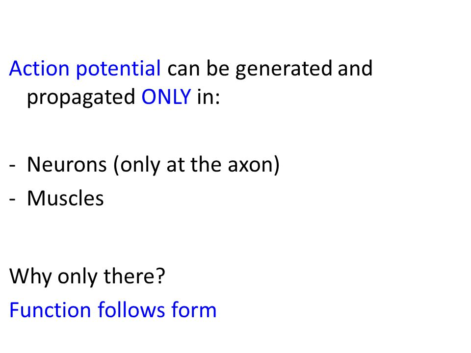 Action potential can be generated and propagated ONLY in: -Neurons (only at the axon) -Muscles Why only there.