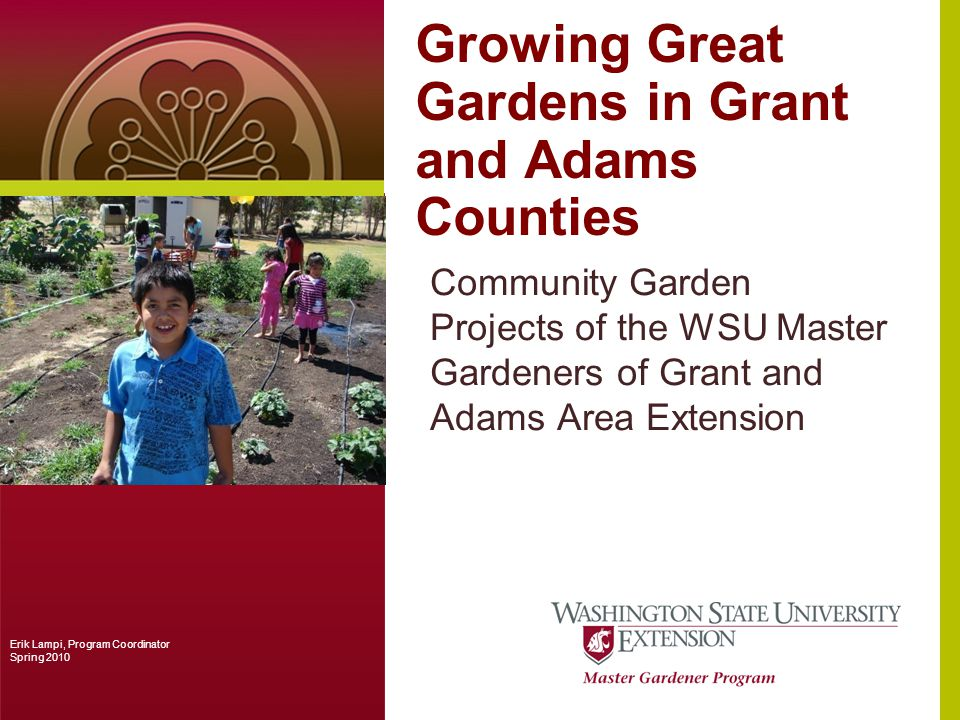 Growing Great Gardens in Grant and Adams Counties Community Garden Projects of the WSU Master Gardeners of Grant and Adams Area Extension Erik Lampi, Program Coordinator Spring 2010