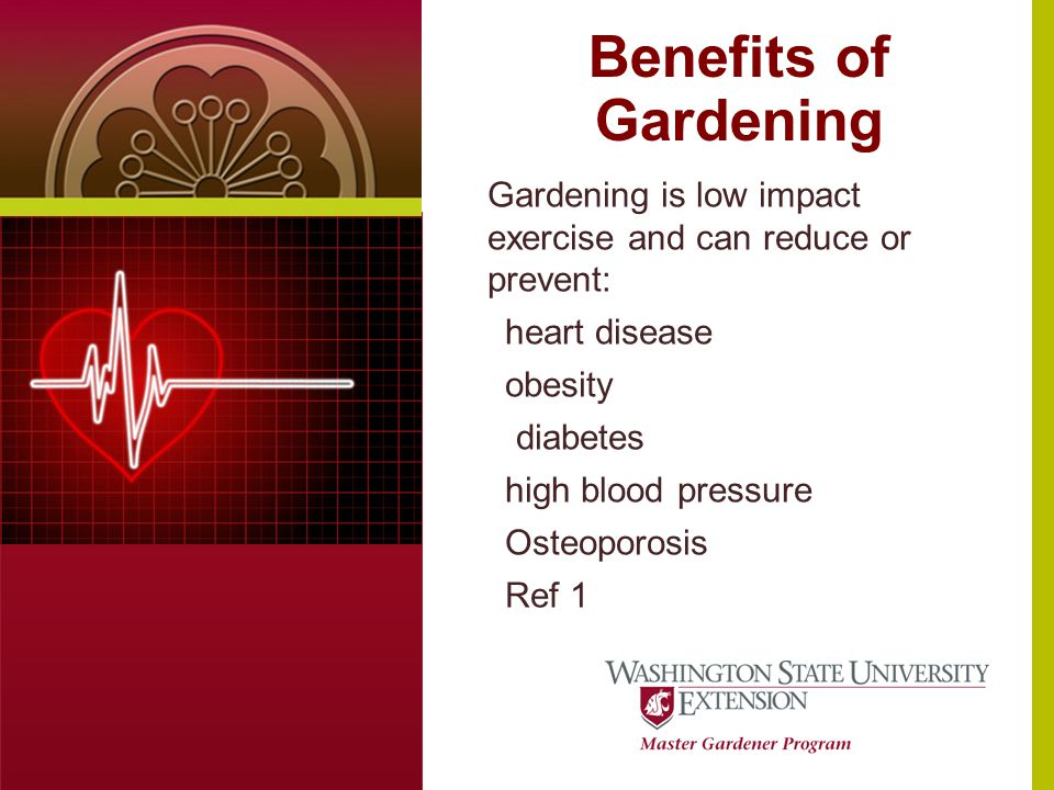 Benefits of Gardening Text or photo here (4 x 5.5 at 100dpi) Gardening is low impact exercise and can reduce or prevent: heart disease obesity diabetes high blood pressure Osteoporosis Ref 1