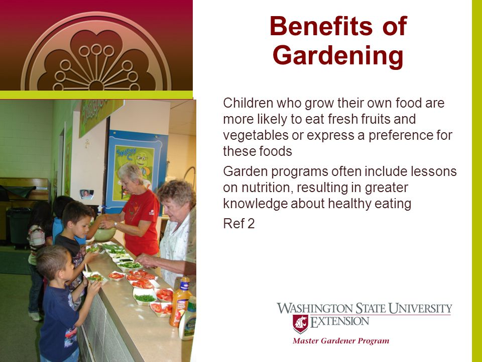 Benefits of Gardening Text or photo here (4 x 5.5 at 100dpi) Children who grow their own food are more likely to eat fresh fruits and vegetables or express a preference for these foods Garden programs often include lessons on nutrition, resulting in greater knowledge about healthy eating Ref 2