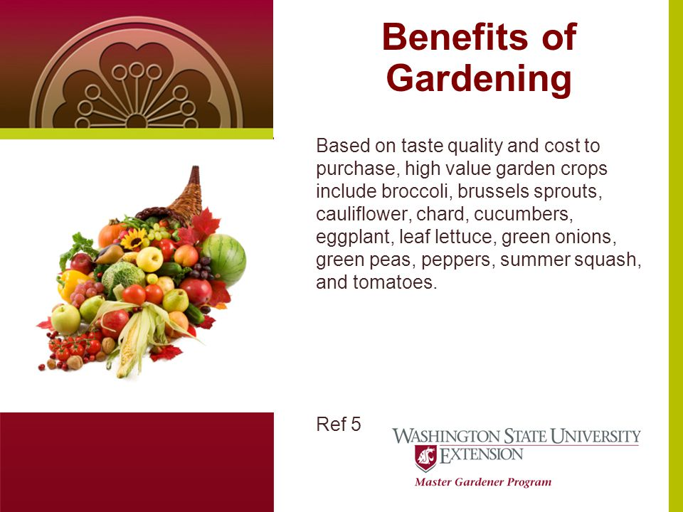 Benefits of Gardening Text or photo here (4 x 5.5 at 100dpi) Based on taste quality and cost to purchase, high value garden crops include broccoli, brussels sprouts, cauliflower, chard, cucumbers, eggplant, leaf lettuce, green onions, green peas, peppers, summer squash, and tomatoes.