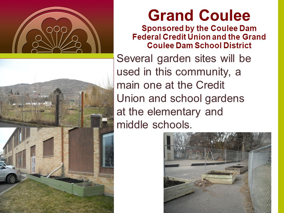 Grand Coulee Sponsored by the Coulee Dam Federal Credit Union and the Grand Coulee Dam School District Several garden sites will be used in this community, a main one at the Credit Union and school gardens at the elementary and middle schools.