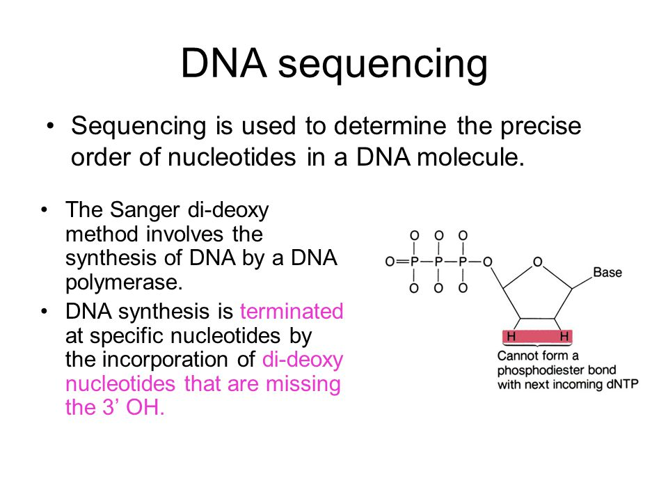 DNA sequencing The Sanger di-deoxy method involves the synthesis of DNA by a DNA polymerase.