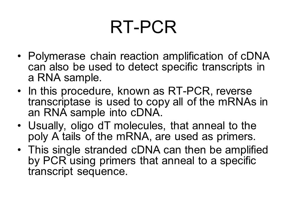 RT-PCR Polymerase chain reaction amplification of cDNA can also be used to detect specific transcripts in a RNA sample.