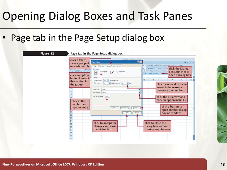New Perspectives on Microsoft Office 2007: Windows XP Edition 18 Opening Dialog Boxes and Task Panes Page tab in the Page Setup dialog box