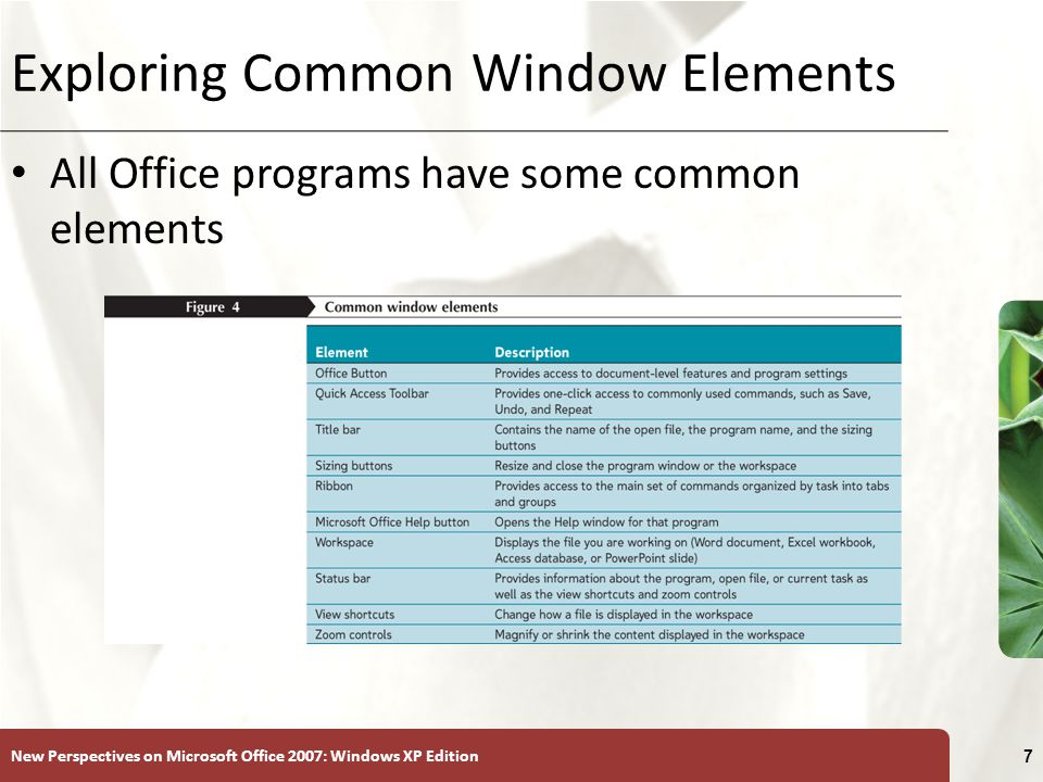 New Perspectives on Microsoft Office 2007: Windows XP Edition 7 Exploring Common Window Elements All Office programs have some common elements