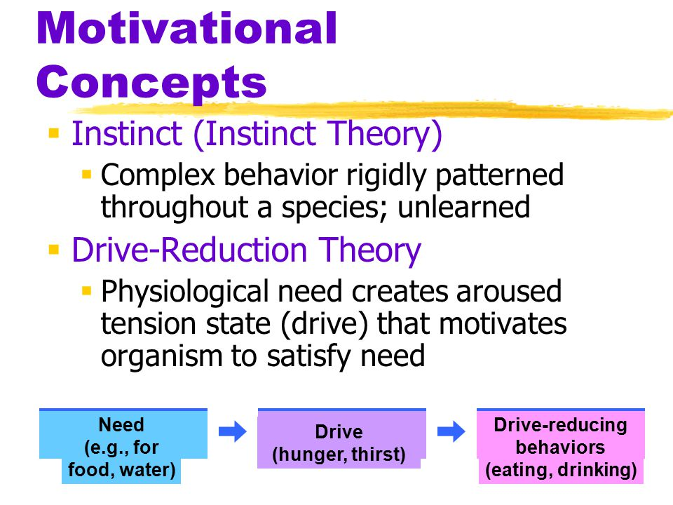 Motivational Concepts  Instinct (Instinct Theory)  Complex behavior rigidly patterned throughout a species; unlearned  Drive-Reduction Theory  Physiological need creates aroused tension state (drive) that motivates organism to satisfy need Drive-reducing behaviors (eating, drinking) Need (e.g., for food, water) Drive (hunger, thirst)