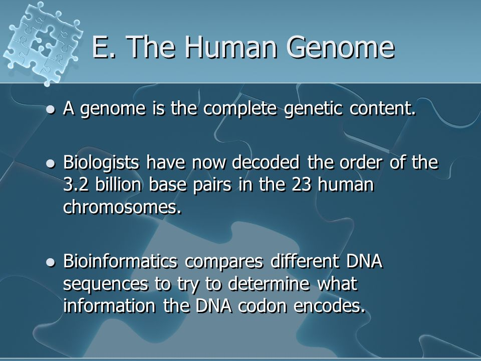 E. The Human Genome A genome is the complete genetic content.