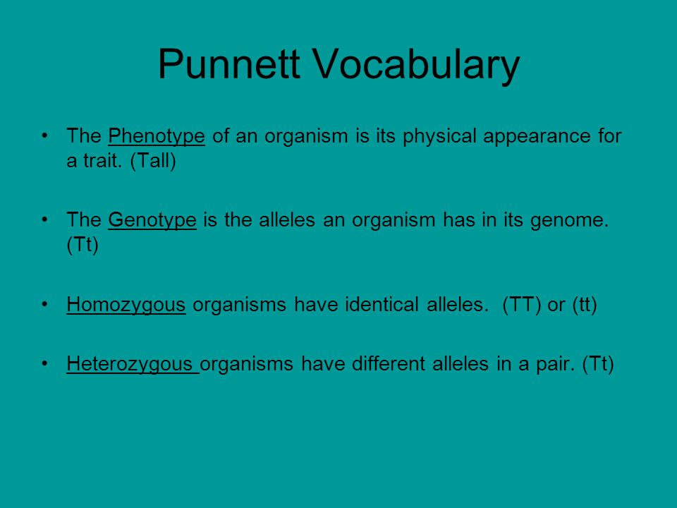 Punnett Vocabulary The Phenotype of an organism is its physical appearance for a trait.