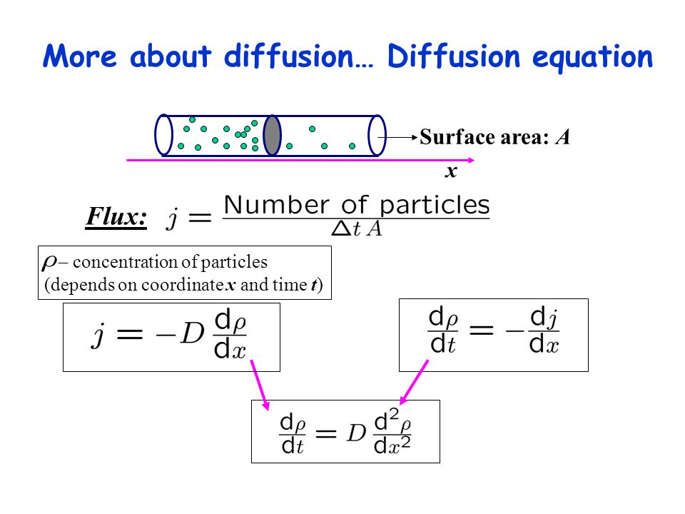 More about diffusion… Diffusion equation Surface area: A x Flux: – concentration of particles (depends on coordinate x and time t)