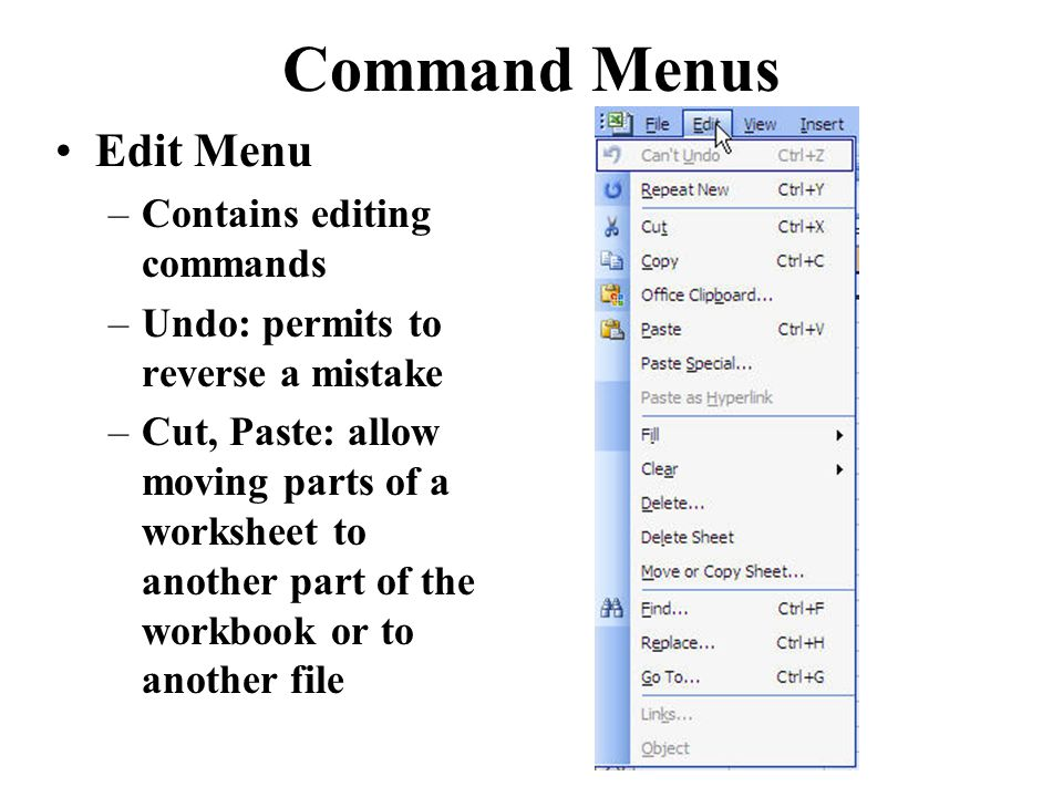Command Menus Edit Menu –Contains editing commands –Undo: permits to reverse a mistake –Cut, Paste: allow moving parts of a worksheet to another part of the workbook or to another file
