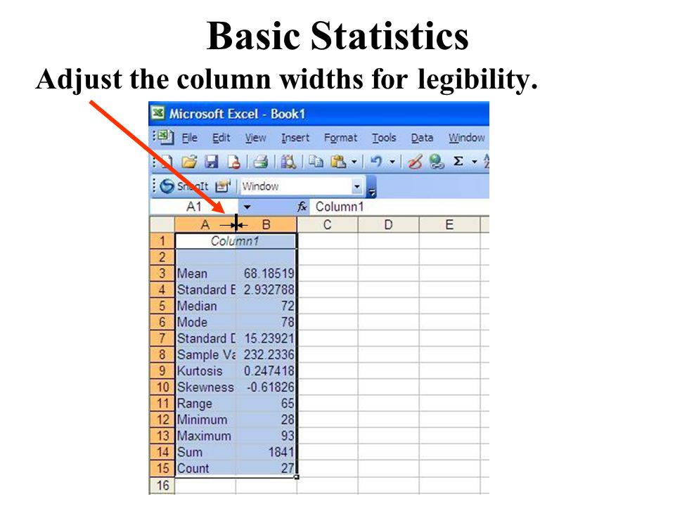Basic Statistics Adjust the column widths for legibility.