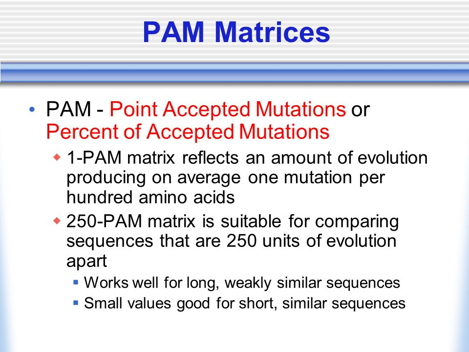 PAM Matrices PAM - Point Accepted Mutations or Percent of Accepted Mutations  1-PAM matrix reflects an amount of evolution producing on average one mutation per hundred amino acids  250-PAM matrix is suitable for comparing sequences that are 250 units of evolution apart  Works well for long, weakly similar sequences  Small values good for short, similar sequences