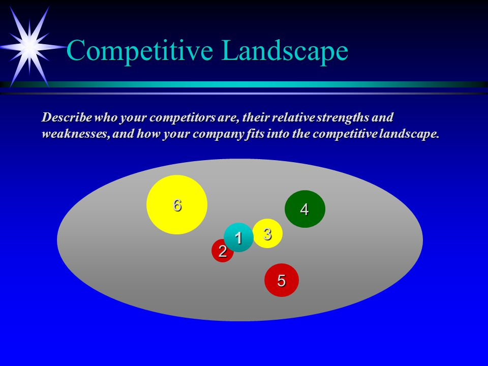 Competitive Landscape Describe who your competitors are, their relative strengths and weaknesses, and how your company fits into the competitive landscape.