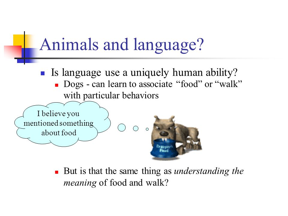 Animals and language. Is language use a uniquely human ability.