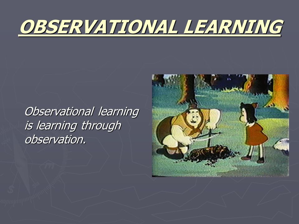 Observational learning is learning through observation.