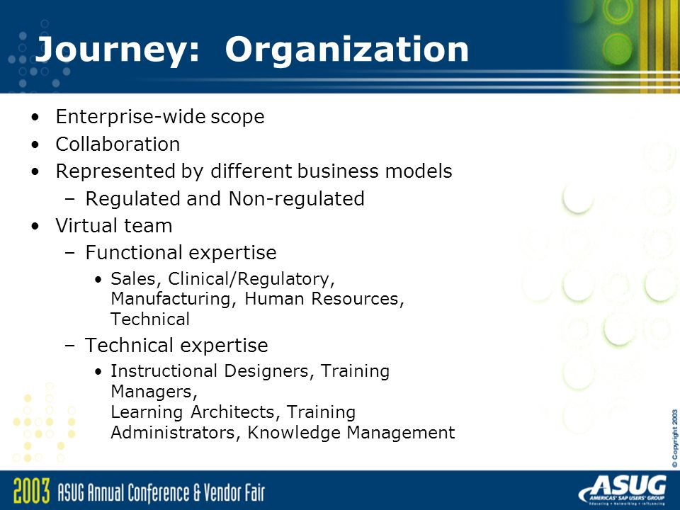 Journey: Organization Enterprise-wide scope Collaboration Represented by different business models –Regulated and Non-regulated Virtual team –Functional expertise Sales, Clinical/Regulatory, Manufacturing, Human Resources, Technical –Technical expertise Instructional Designers, Training Managers, Learning Architects, Training Administrators, Knowledge Management