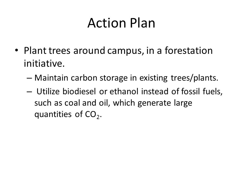 Action Plan Plant trees around campus, in a forestation initiative.