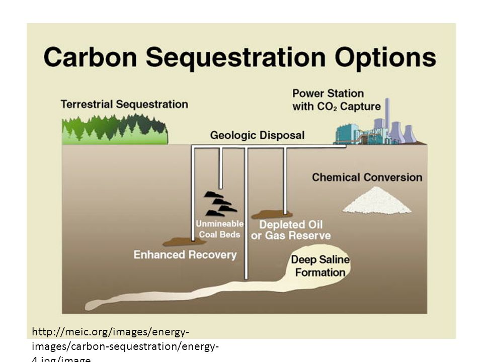 S   images/carbon-sequestration/energy- 4.jpg/image