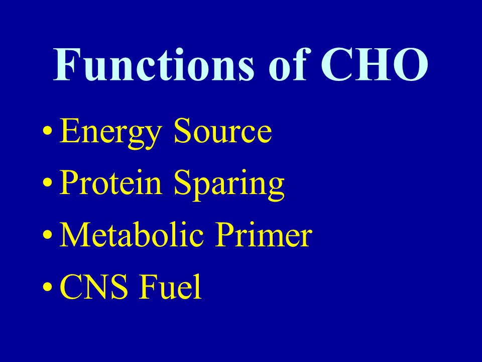 Functions of CHO Energy Source Protein Sparing Metabolic Primer CNS Fuel