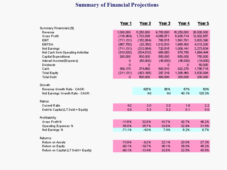 21 Financial Plan  Financial Projections  Summary goes in Plan  All Financial Statements go in Appendix  Assumptions  ~5 key assumptions go in Plan  Detailed assumptions go in Appendix  Business Risks